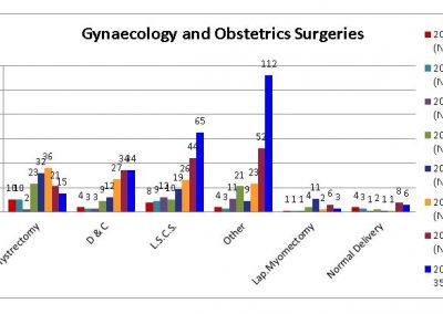 Gynaecology-and-Obstetrics-Surgeries